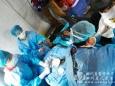 我院三名队员在帐篷医院手术室内完成首例手术