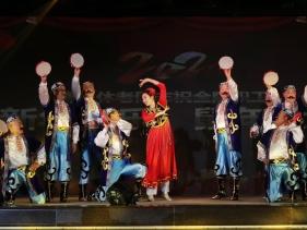 2020春晚-歌伴舞《阿拉木汗》(离退休部合唱团)