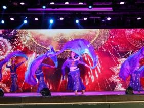 2020春晚-中东舞《魔幻纱舞》(院办)