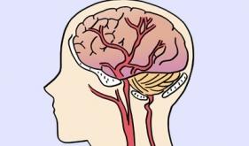神经外科诊治常见疾病